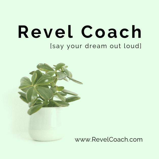 Revel Coach (11)